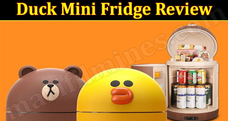 Duck Mini Fridge Review