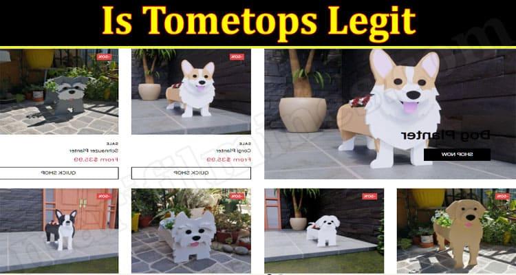 Tometops.com Review